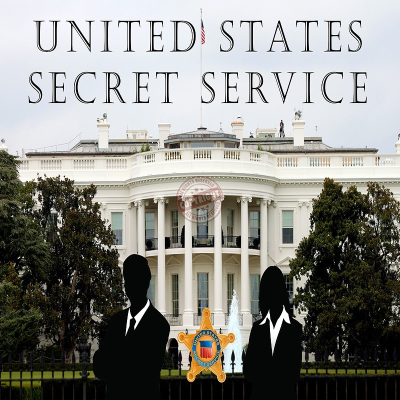 The United States Secret Service Free Essay, Term Paper and Book Report